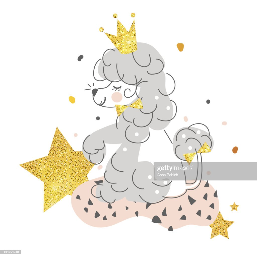 Beautiful, smiling, cute dog poodle with golden crown, stars