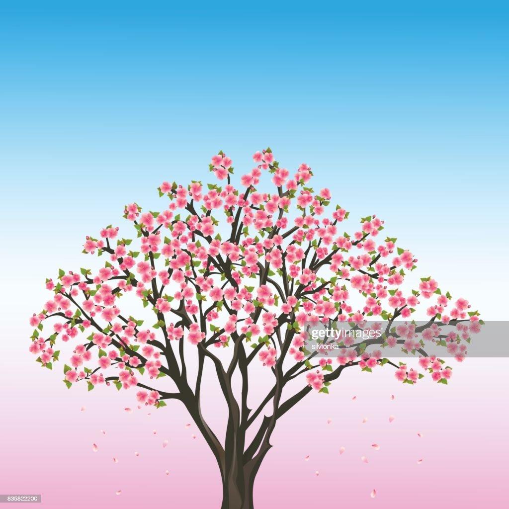 Beautiful spring background with sakura - japanese cherry tree