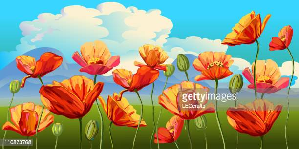 beautiful spring landscape - poppy stock illustrations, clip art, cartoons, & icons