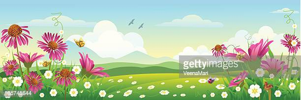 beautiful spring landscape - gerbera daisy stock illustrations, clip art, cartoons, & icons