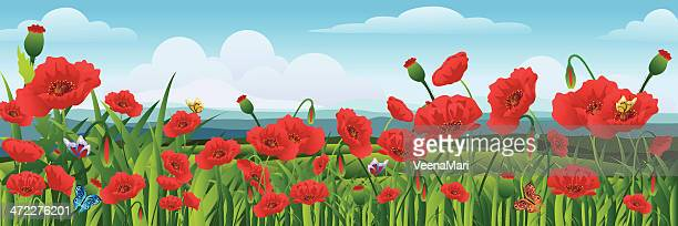 beautiful spring landscape - poppy plant stock illustrations, clip art, cartoons, & icons