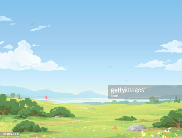 beautiful summer landscape - cloudscape stock illustrations, clip art, cartoons, & icons
