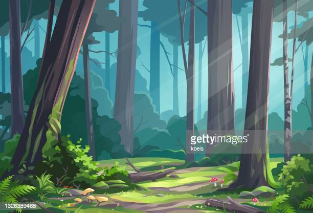 beautiful sunlit forest - beauty in nature stock illustrations