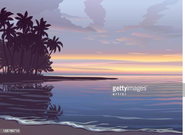 illustrations, cliparts, dessins animés et icônes de magnifique coucher de soleil - afrique paysage
