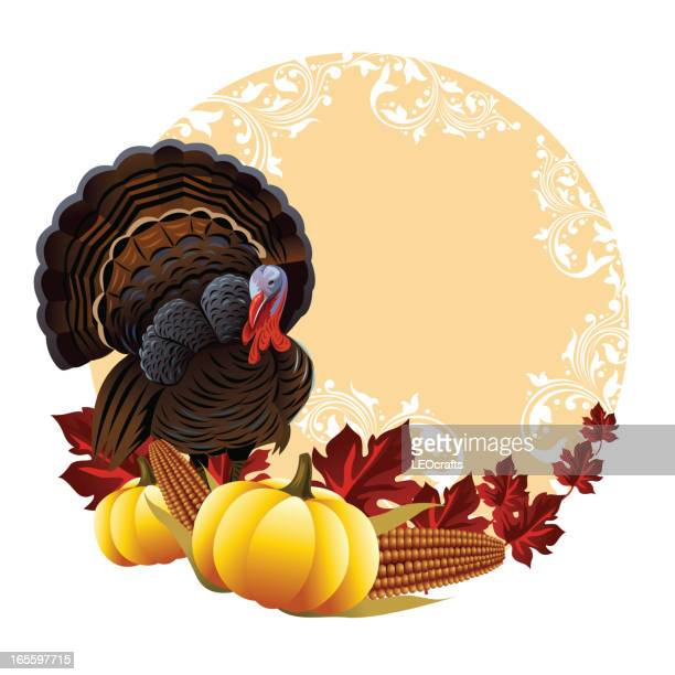 Beautiful Thanksgiving Design elements