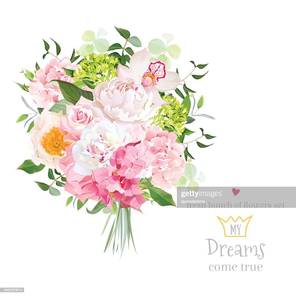 Beautiful vector bouquet with peony, rose, carnation, hydrangea,