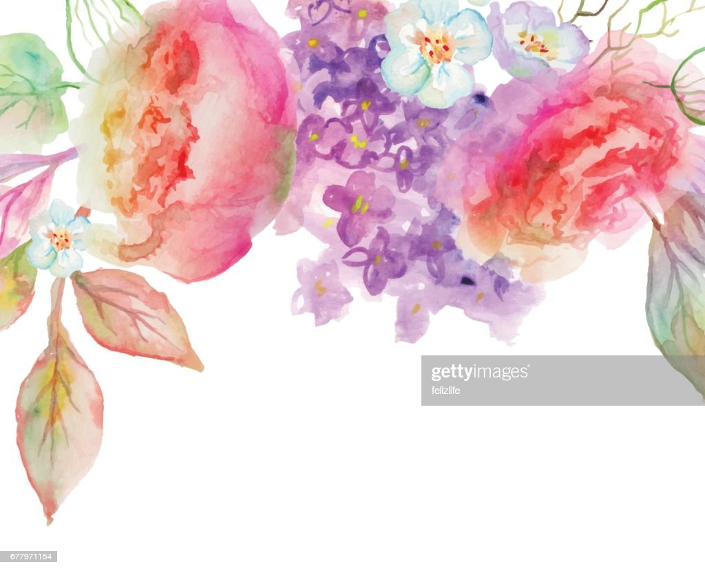 beautiful watercolor flowers : stock illustration