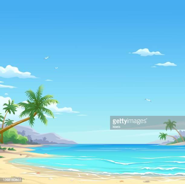 schöner weißer sandstrand - idylle stock-grafiken, -clipart, -cartoons und -symbole