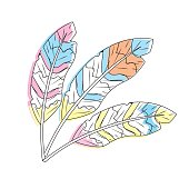 beauty feathers style with decoration design