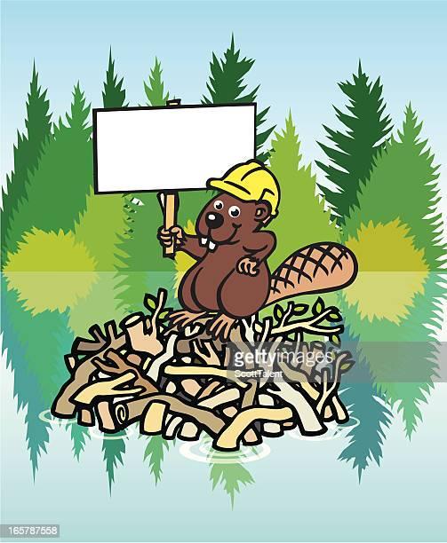 beaver dam - driftwood stock illustrations