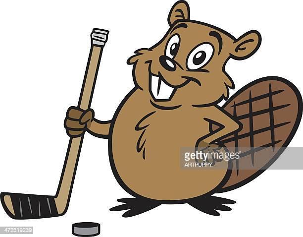beaver hockey player - funny beaver stock illustrations