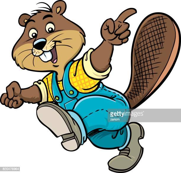 beaver mascot - funny beaver stock illustrations
