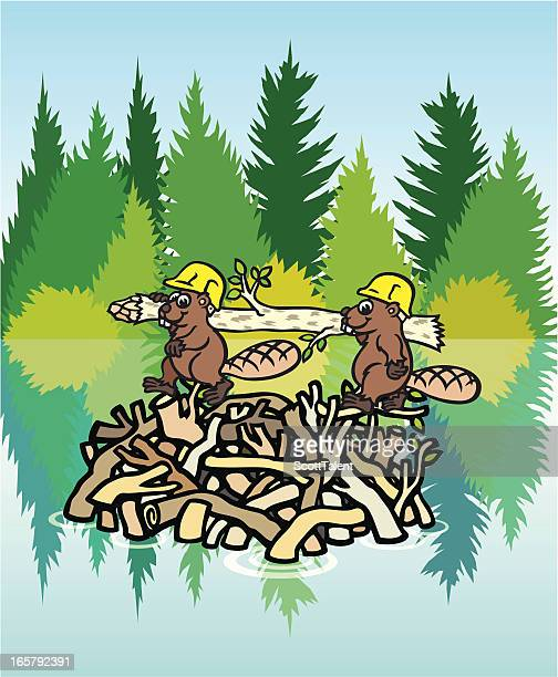 beavers at work - driftwood stock illustrations