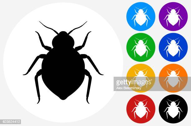 Bedbug Icon on Flat Color Circle Buttons