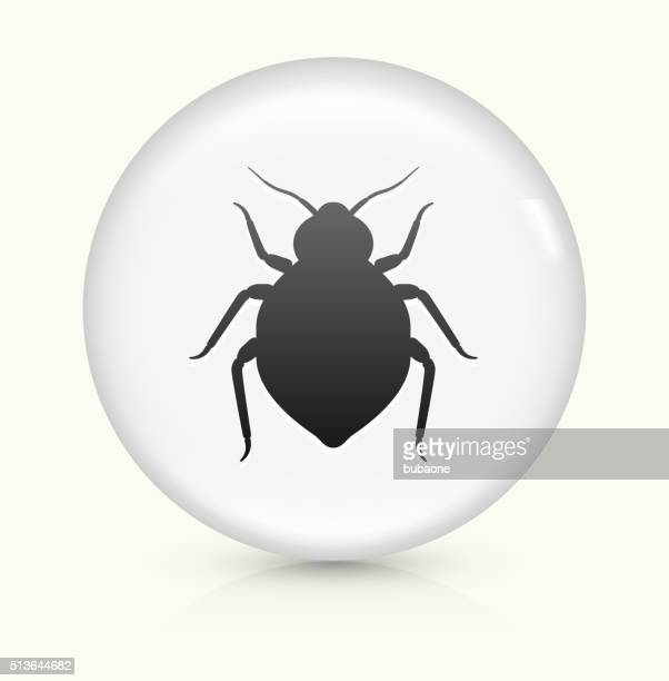 Bedbug icon on white round vector button