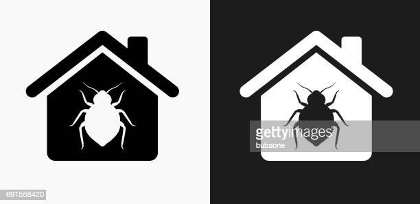 Bedbugs at Home Icon on Black and White Vector Backgrounds