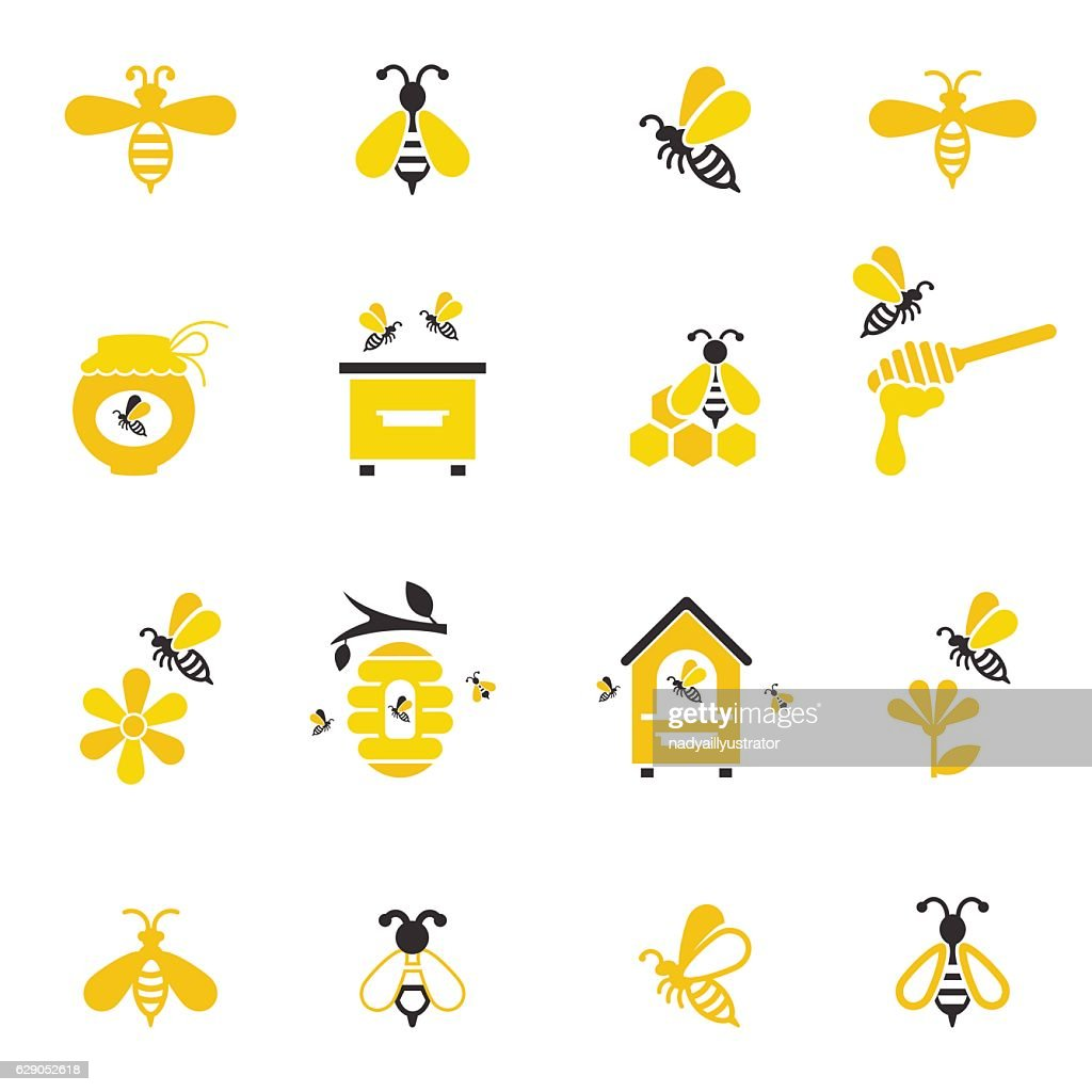 Bee and honey icon set.