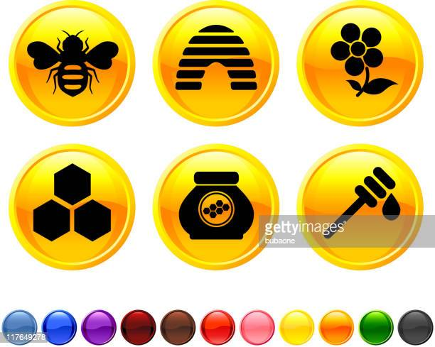 bee and honey royalty free vector icon set
