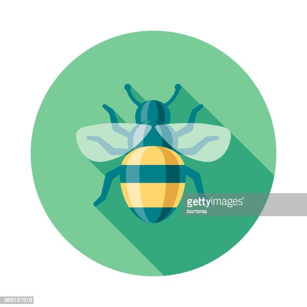 bee flat design springtime icon - bumblebee stock illustrations, clip art, cartoons, & icons