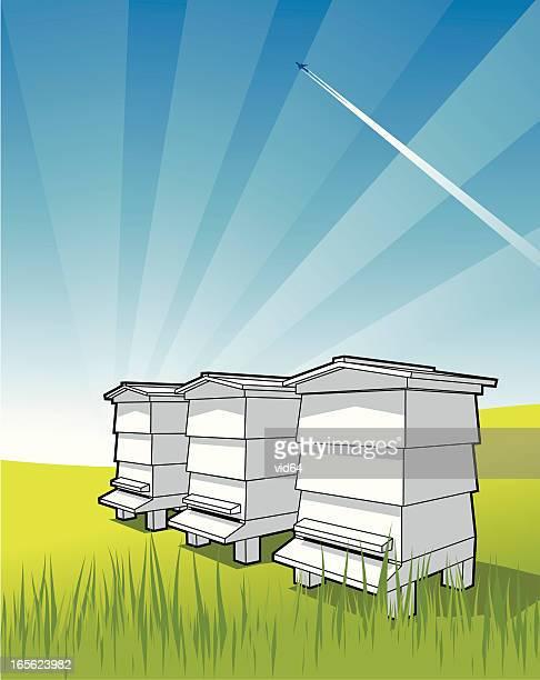 illustrations, cliparts, dessins animés et icônes de bee hives - ruche