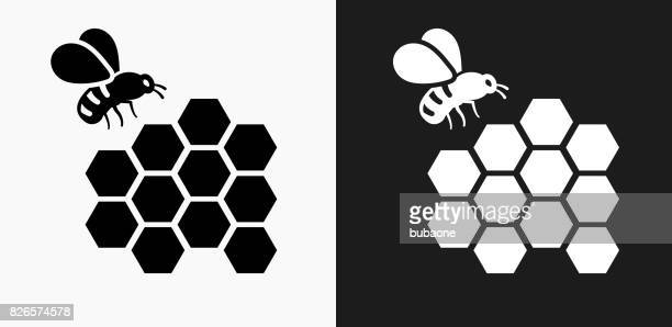 bee icon on black and white vector backgrounds - queen bee stock illustrations