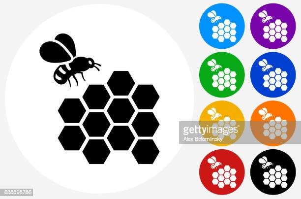 bee icon on flat color circle buttons - queen bee stock illustrations