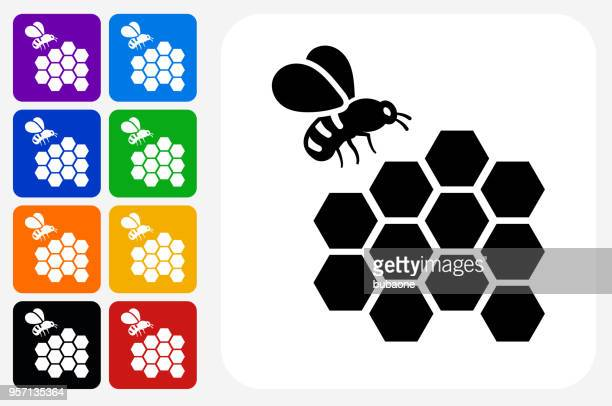 bee icon square button set - queen bee stock illustrations