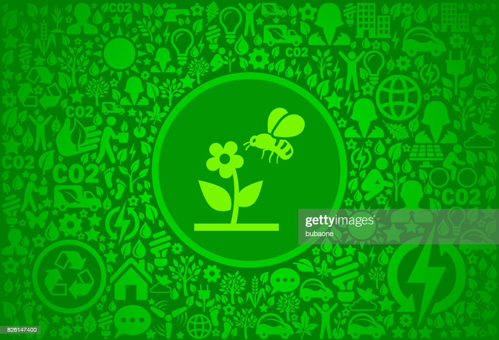 Bee on Flower Environment Green Vector Icon Pattern