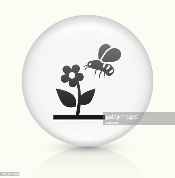 Bee on Flower icon on white round vector button