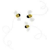 3 bee on white background