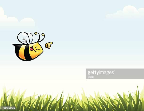 Biene zeigt
