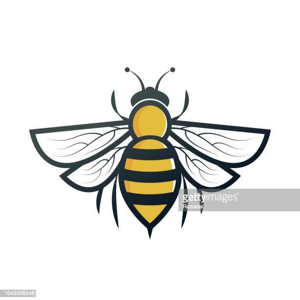 bee - bee stock illustrations