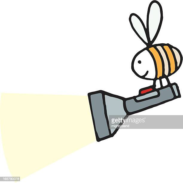 bee with a flashlight or torch - flashlight beam stock illustrations, clip art, cartoons, & icons