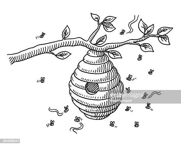illustrations, cliparts, dessins animés et icônes de beehive dessin sur la succursale - ruche