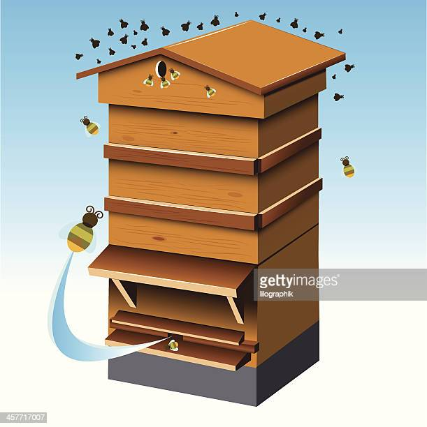 illustrations, cliparts, dessins animés et icônes de ruche - ruche