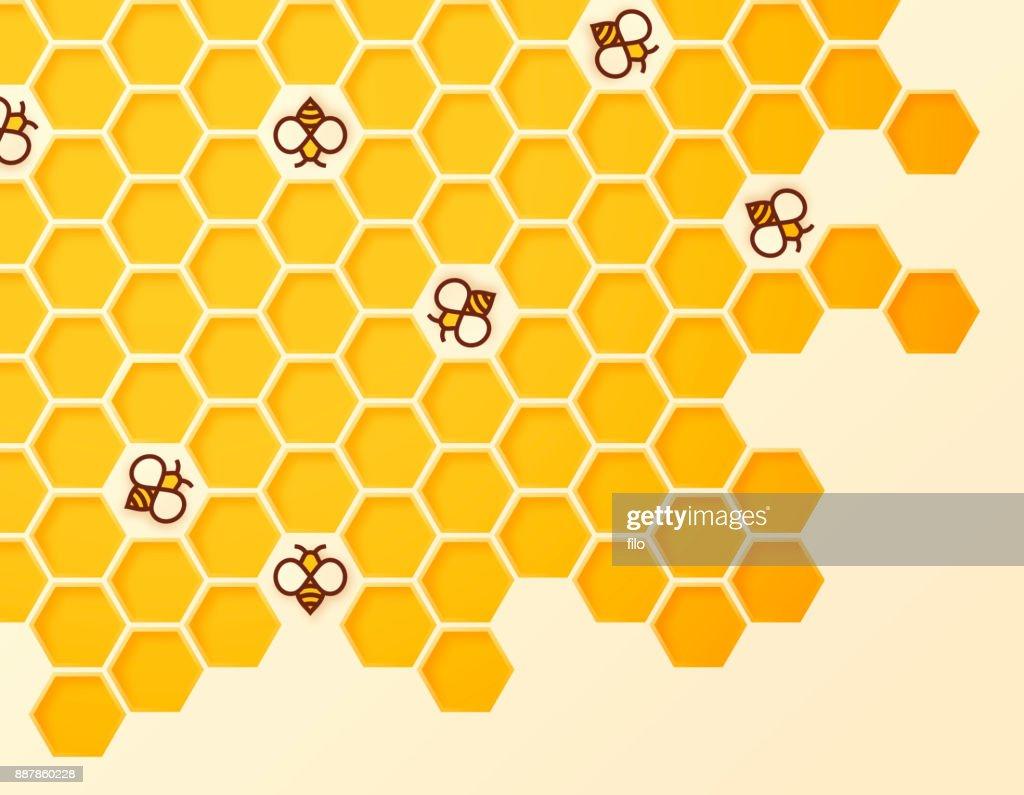Beehive : stock illustration