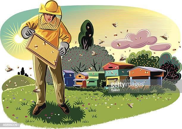 beekeeper - 40th anniversary stock illustrations, clip art, cartoons, & icons