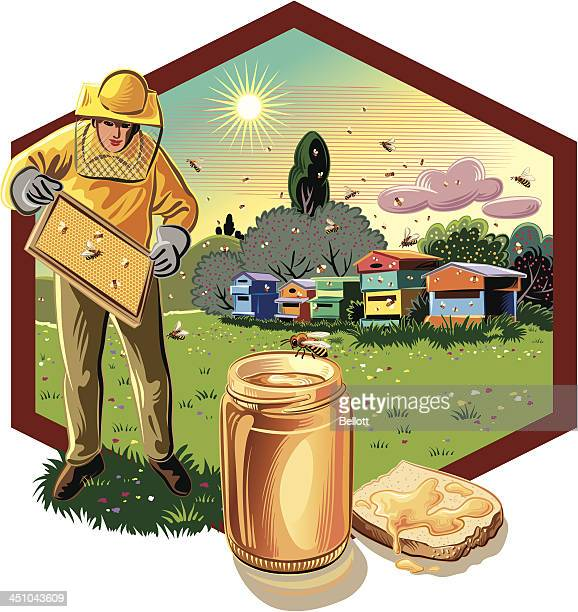 beekeeper with frame - 40th anniversary stock illustrations, clip art, cartoons, & icons
