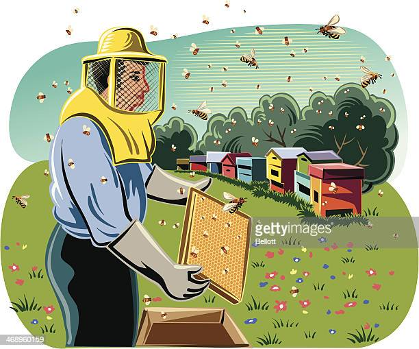 beekeeper with hives - 40th anniversary stock illustrations, clip art, cartoons, & icons