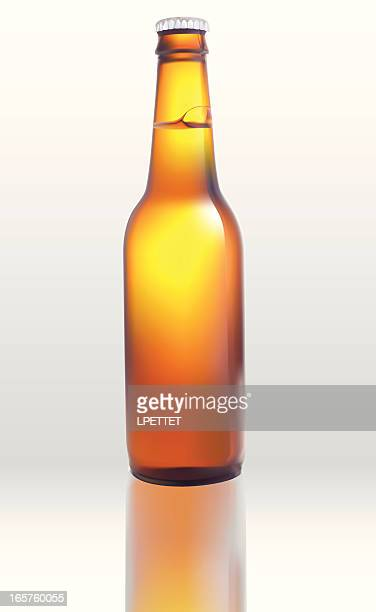 Beer Bottle - Vector Illustration