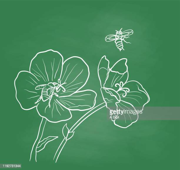 bees doing pollination chalkboard - worker bee stock illustrations
