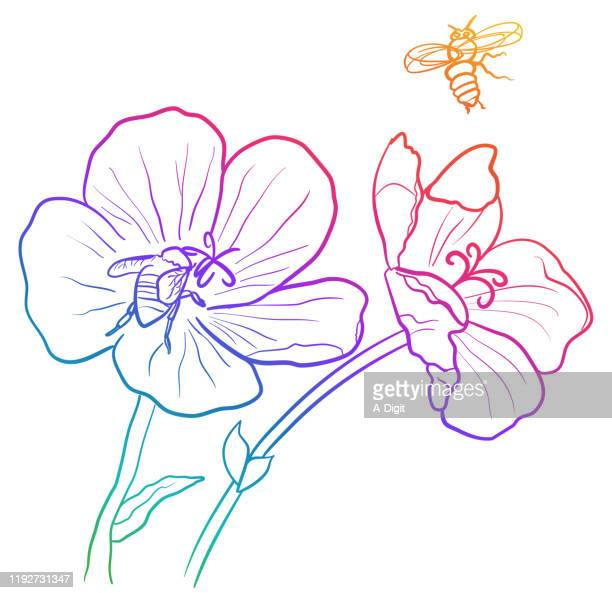 bees doing pollination rainbow - worker bee stock illustrations