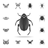 beetle goliath. Detailed set of insects items icons. Premium quality graphic design. One of the collection icons for websites, web design, mobile app