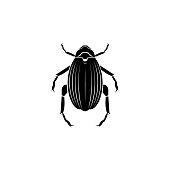 beetle goliath icon. Elements of world of insects icon for concept and web apps. Illustration  icon for website design and development, app development. Premium icon