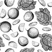 Beetroot hand drawn vector seamless pattern. Isolated engraved style Beetroot