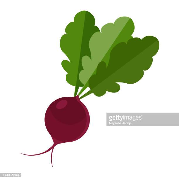 beetroot icon - common beet stock illustrations, clip art, cartoons, & icons