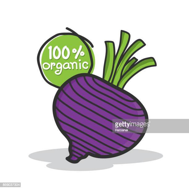 beetroot vegetable - common beet stock illustrations, clip art, cartoons, & icons