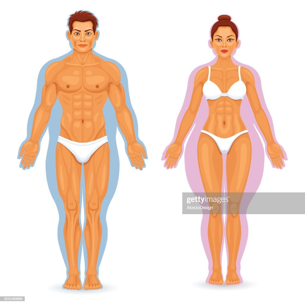 Before and after weight loss : stock illustration