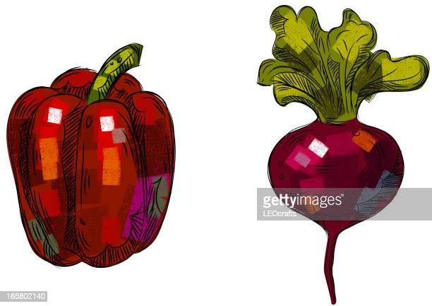 bell pepper and turnip isolated on white - turnip stock illustrations, clip art, cartoons, & icons