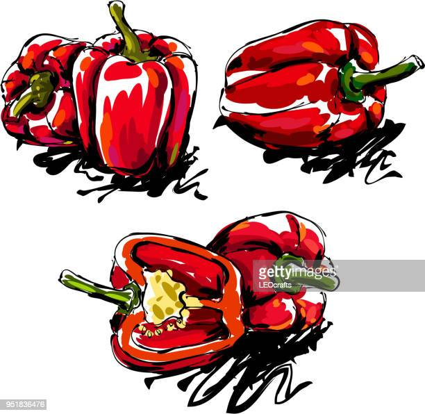 bell pepper drawing - bell pepper stock illustrations, clip art, cartoons, & icons